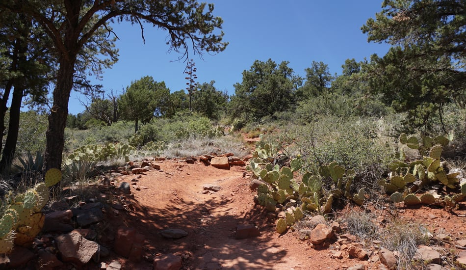 Hiking Sedona Brins Trail