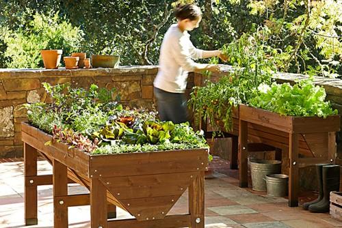 Shop Agrarian & Gardening