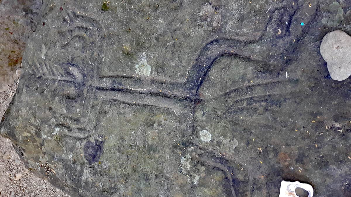 Altavista Petroglyphs